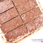 Chocolate Coconut Vegan and Gluten-Free Granola Bars