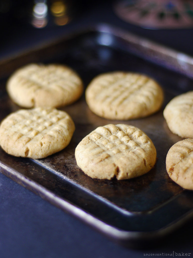 gluten-free vegan peanut butter cookies recipe